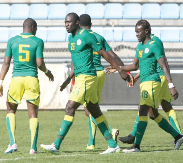 Tanière : Contre la Namibie, les Lions doivent avoir en tête le match contre les requins bleus (Youssouph Dabo)